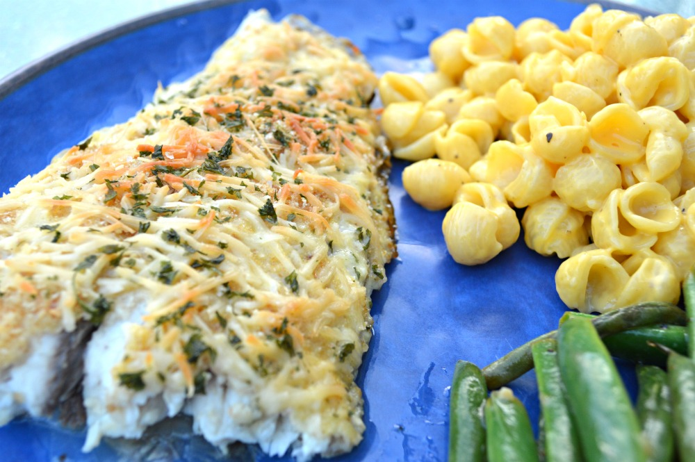 Baked parmesan crusted red fish themrsinglink for Baked parmesan fish