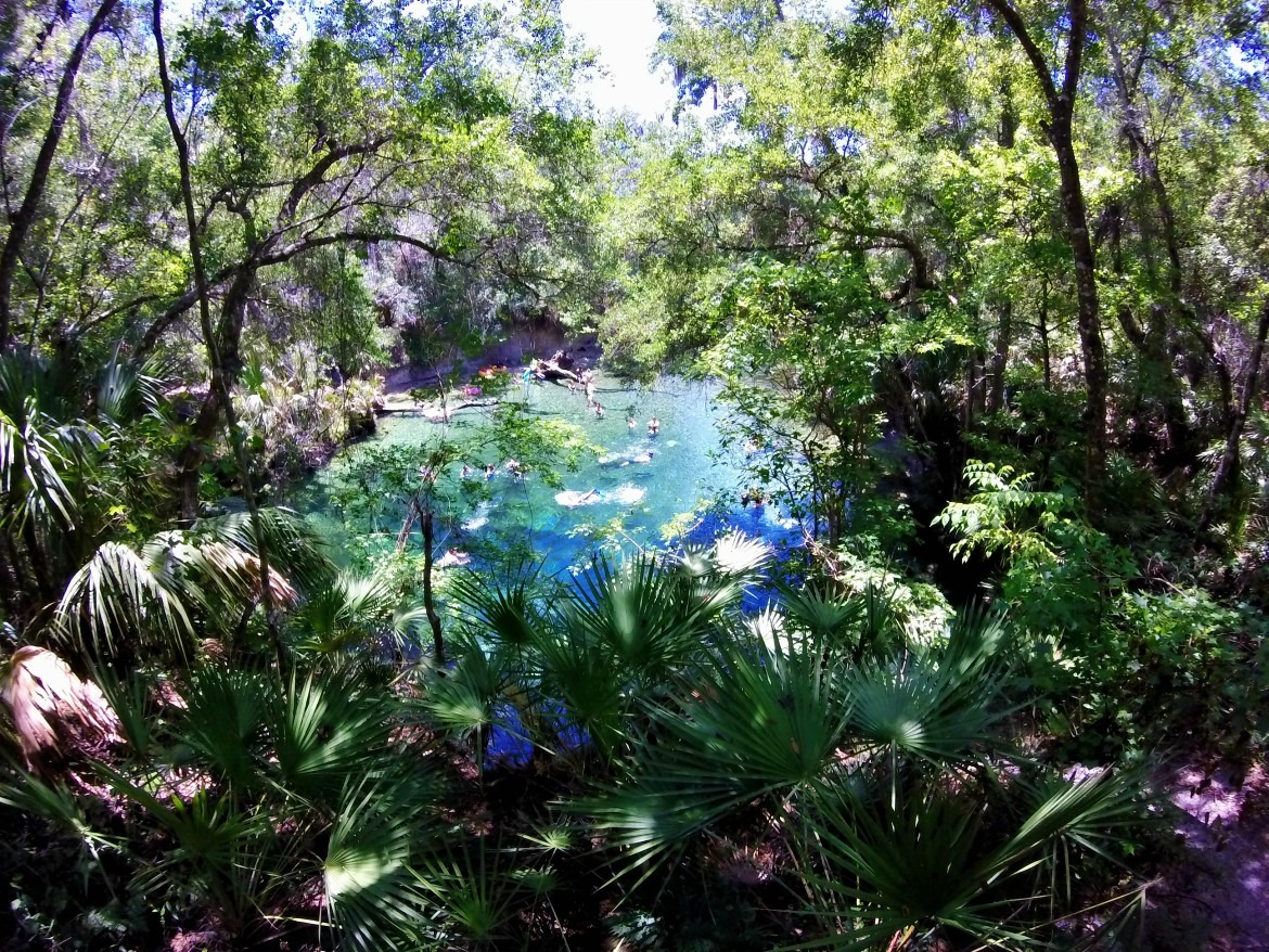 Snorkeling The Florida Blue Springs State Park | Florida Springs | Things To Do In Florida | Summer Outdoor Activities | Summer Swimming Activities | State Park Travel | theMRSingLink