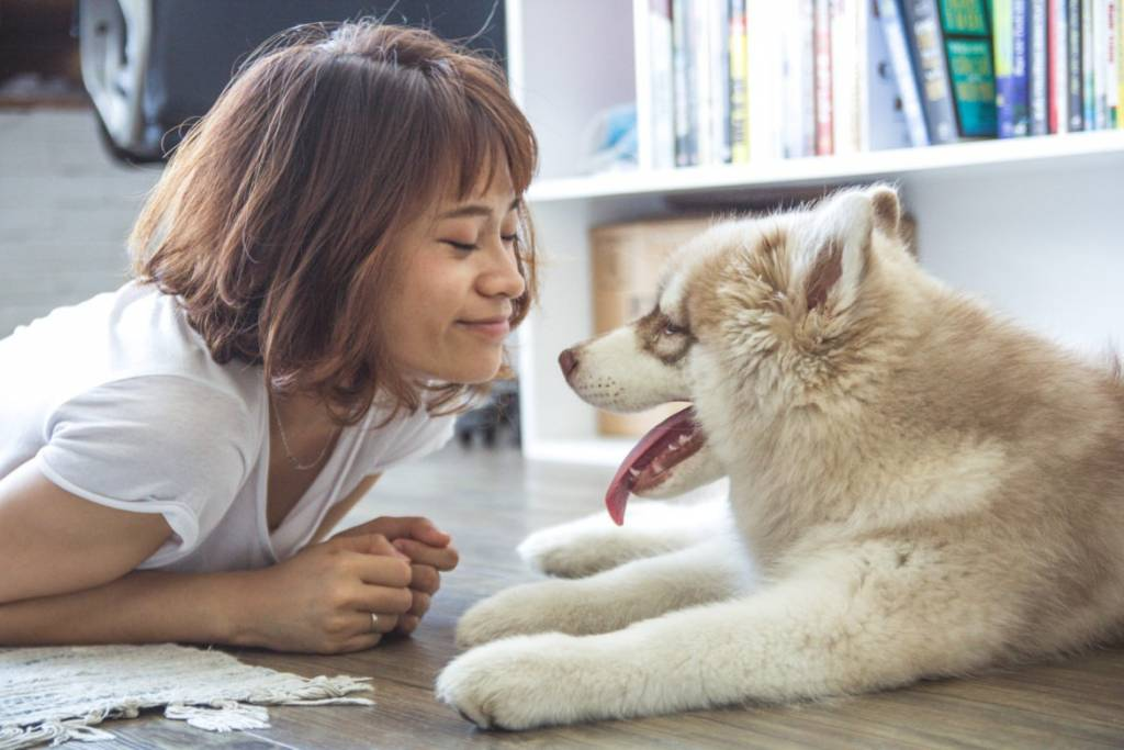 14 Signs You Actually Need A Dog In Your Life More Than A Man | Dog Mom | Life With A Dog | Why You Need A Dog Over A Man | Why Dogs Make The Best Companions | Dogs Are The Definition To Unconditional Love | How My Dog Changed My Perception On Love | theMRSingLink
