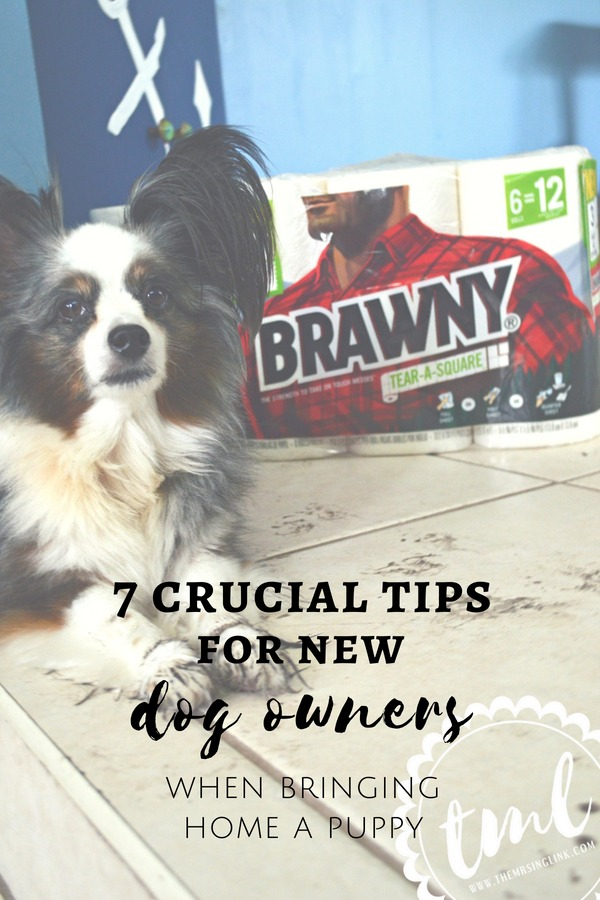 7 Crucial Tips For New Dog Owners When Bringing A Puppy Home | #ad #TearASquare #Brawny #TargetFinds | Tips for bringing a new puppy home | Adjusting to life with a new puppy | New dog owners - 7 things you need to know | theMRSingLink